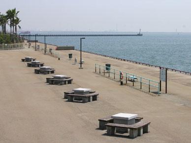 海 釣り 浜 公園 釣果 鳴尾